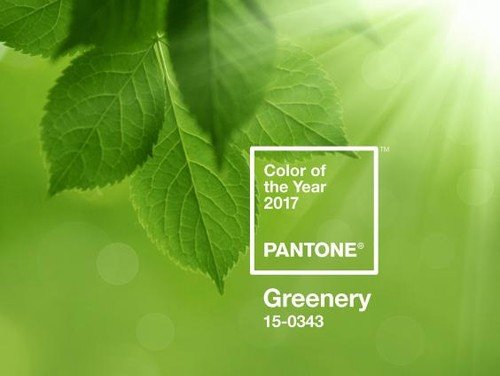 Make a Fresh Start with Pantone's Color of the year – Greenery